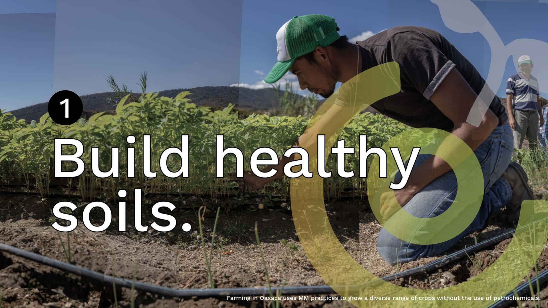 build-healthy-soils