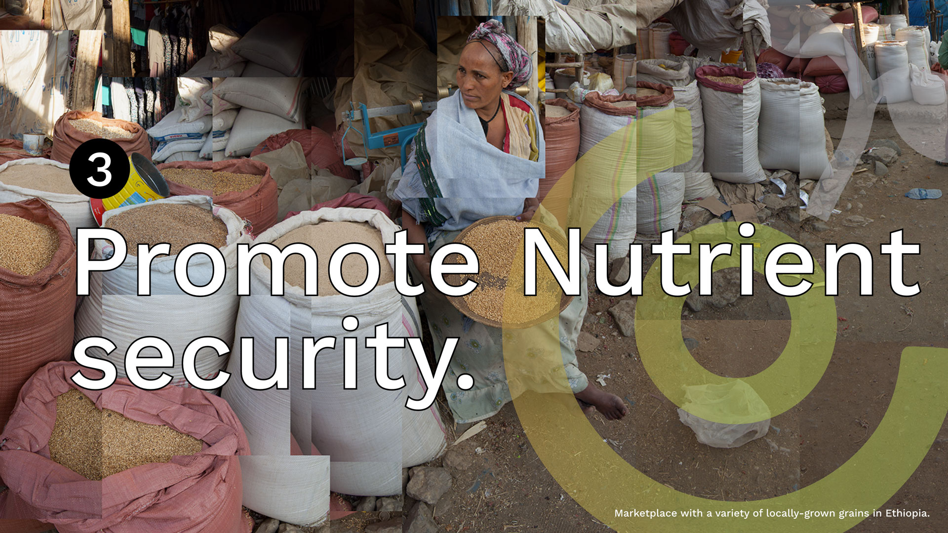 Promote-Nutrient-Security