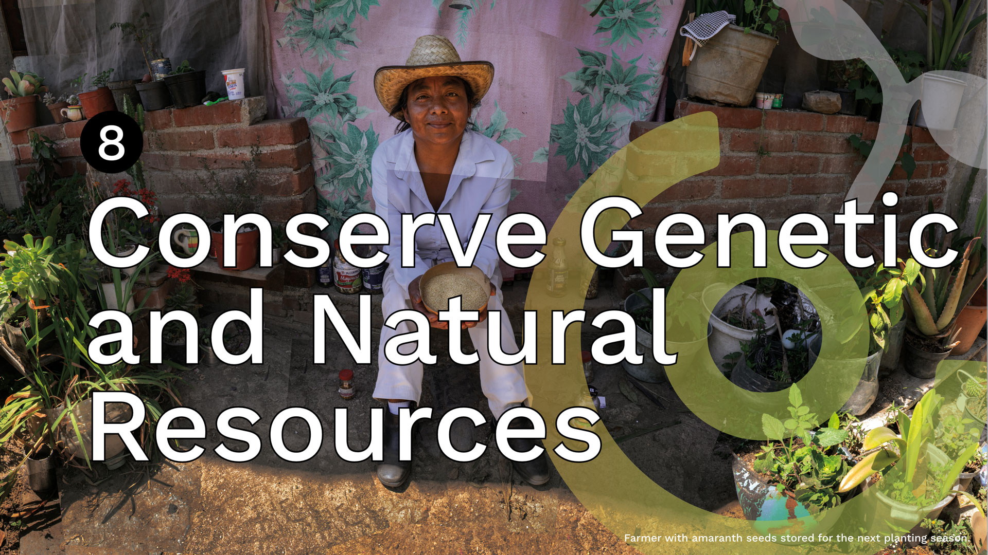 REAWAKENED8_Conserve-Genetic-and-Natural-Resources