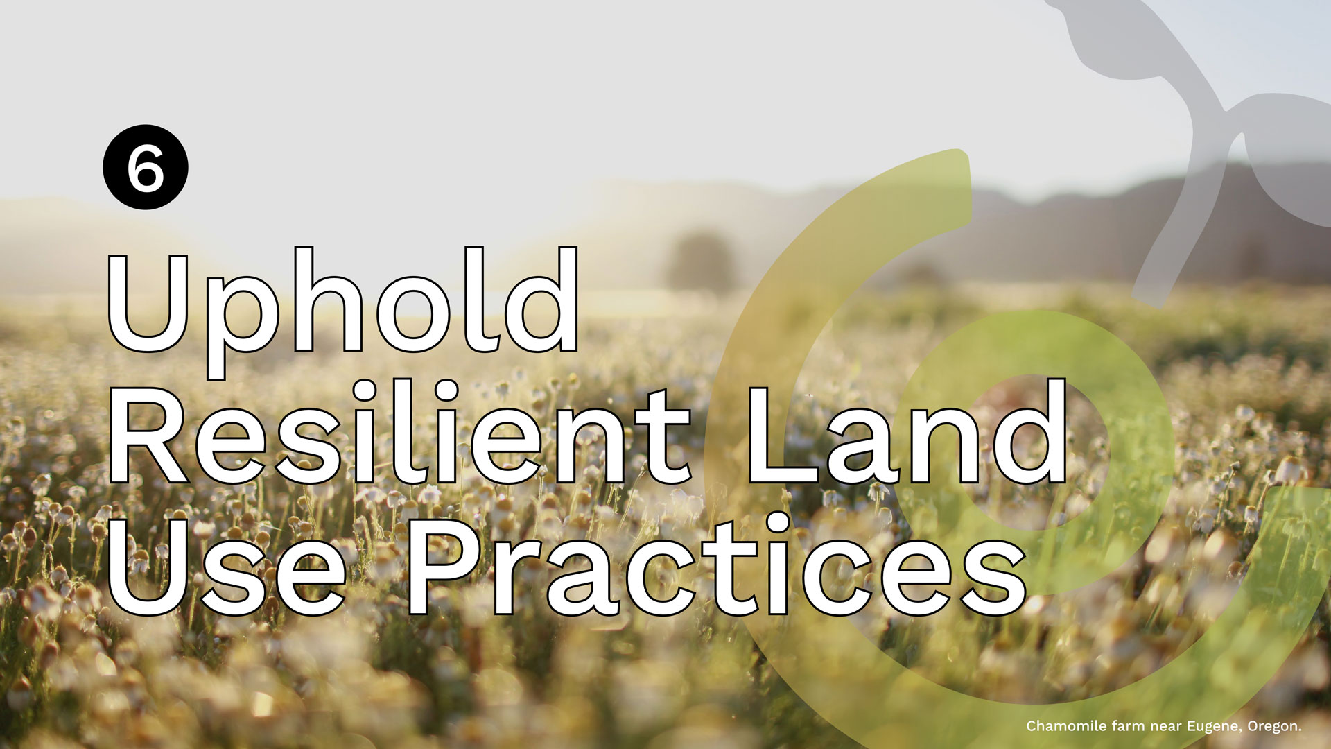 Uphold-Resilient-Land-Use-Principles