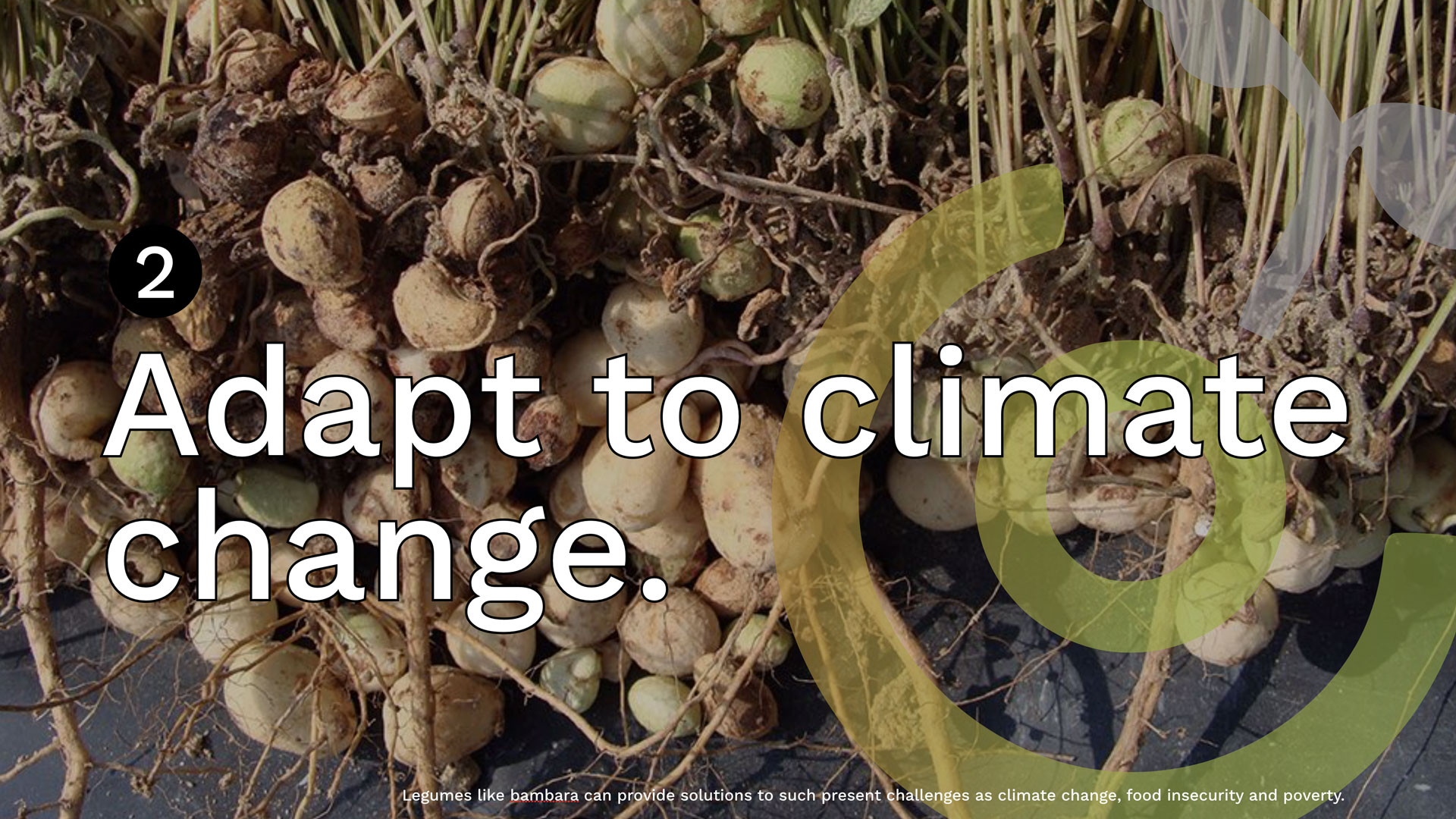 adapt-climate-change
