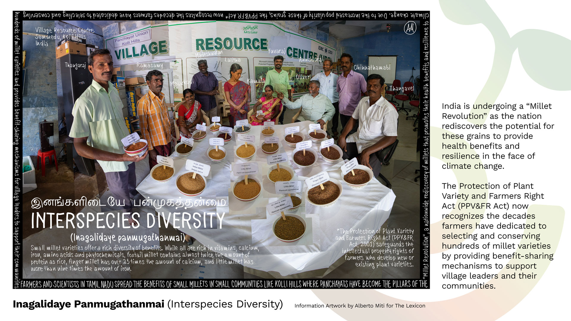 diversity_miti
